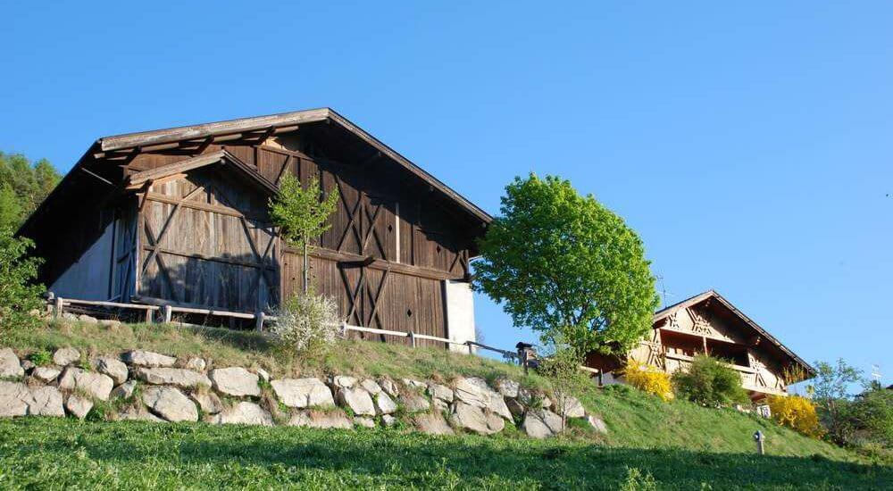 moarhof-gufidaun-klausen-suedtirol (8)